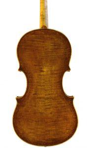 viola-flavetta-17-01-r