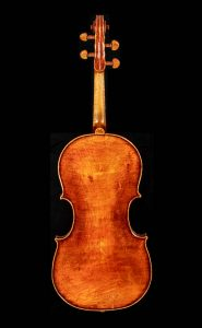 Viola-Flavetta-17-03-ar