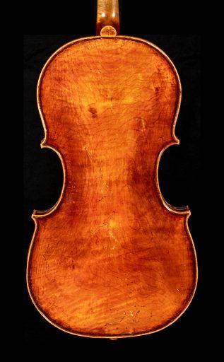 Viola-Flavetta-17-03-r