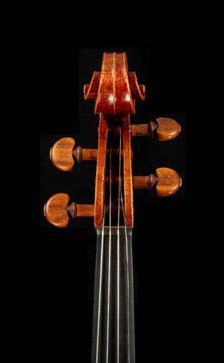 Viola-Flavetta-17-03-tf