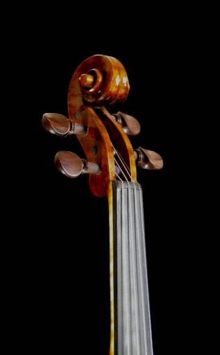 violino-mecatti-19-03-tfd