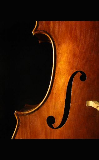 violoncello-seyda-19-04-effe