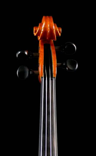 viola-bar-19-06-tf